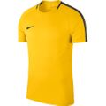 Nike Dry Academy 18 Trainings Top gelb
