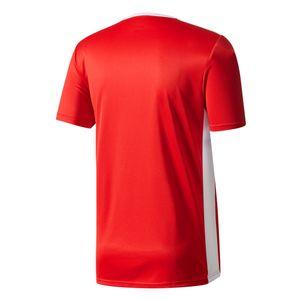 adidas Entrada 18 Trikot trainingsshirt rot / weiß – Bild 2