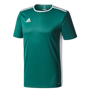 adidas Entrada 18 Trikot Trainingsshirt grün – Bild 1