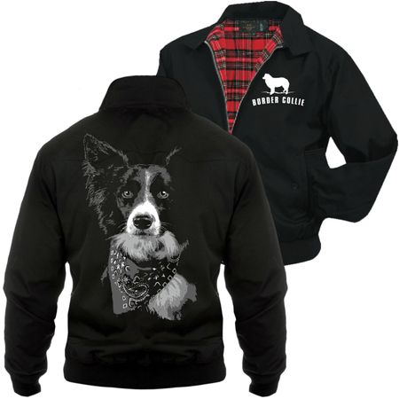 Männer Harrington Jacke Border Collie