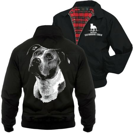 Männer Harrington Jacke American Staffordshire Terrier BOSS