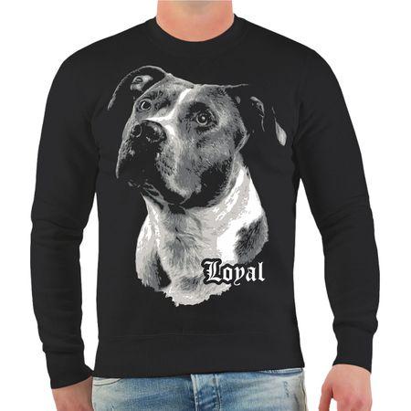 Männer Sweatshirt American Staffordshire Terrier - treuer Freund