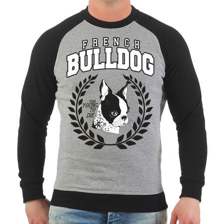 Männer Sweatshirt French Bulldog 2020