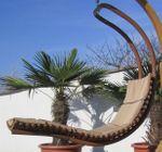 DESIGN Hängeliege NAVASSA-SEAT aus Holz Lärche / Metall mit Auflage (OHNE Gestell) - Bild 2