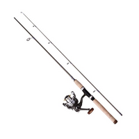 Paladin Castalia USA Sharkfin Spinncombo YS2000 Rute und Angelrolle 4+1 Kugellager