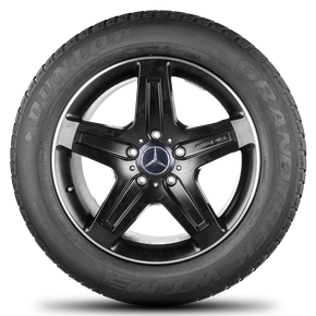 AMG Mercedes Benz G-class W463 G63 G65 19 inch rim alloy wheels winter tyres