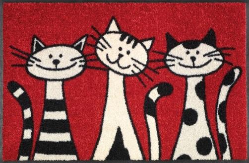 Katzen Wash Dry Fussmatte Three Cats