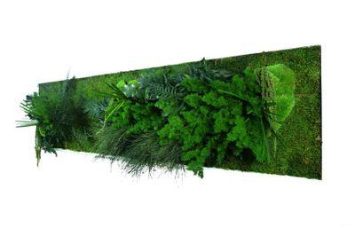 styleGREEN Pflanzenbild 140 x 40 cm