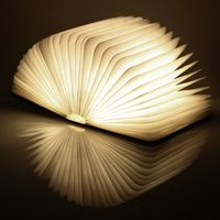 ginkgo Mini Book Light Walnuss, warmes Licht