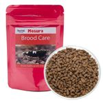 Mosura Brood Care  001