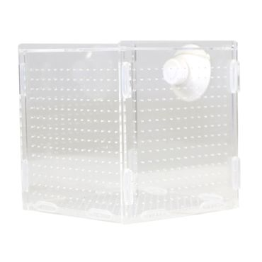 Powershrimp Breeding box ONE CASE 15x15x15cm – Bild 2