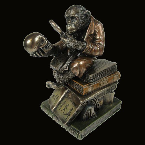 Box Darwinism of Evolutionary Theory  – Bild 1
