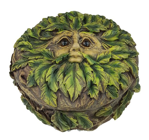Eyes of the Forest Box 13.5cm – Bild 1