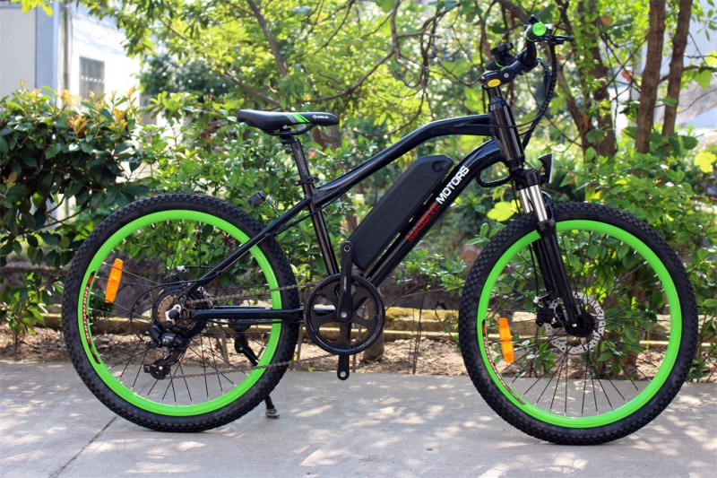 ebike f r kinder elektrisches kinderfahrrad mountainbike 250w 24 zoll e bikes e scooter. Black Bedroom Furniture Sets. Home Design Ideas