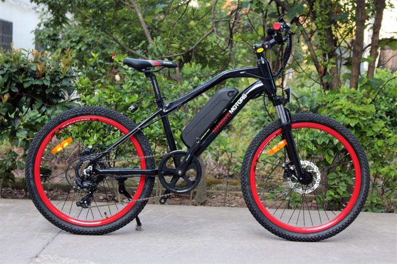 Ebike für Kinder - Elektrisches Kinderfahrrad Mountainbike - 250W - 24 Zoll – Bild 15