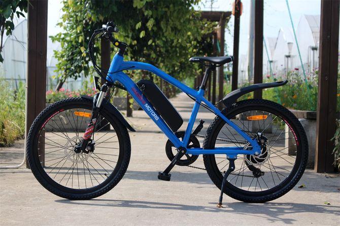 Ebike für Kinder - Elektrisches Kinderfahrrad Mountainbike - 250W - 24 Zoll