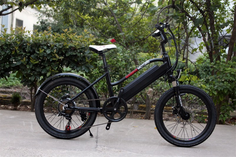 ebike f r kinder elektrisches kinderfahrrad mountainbike 250w 20 zoll e bikes e scooter. Black Bedroom Furniture Sets. Home Design Ideas