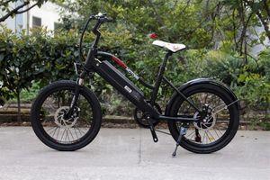 Ebike für Kinder - Elektrisches Kinderfahrrad Mountainbike - 250W - 20 Zoll 001