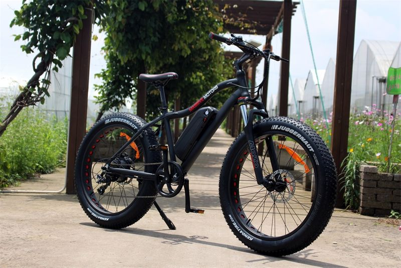 E Fatbike SPORT - 750W - 48V - 17,5 AH Power Mountain Bike - NEU 2018 – Bild 4