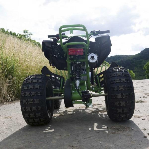 Automatik Quad mit Rückwärtsgang für Kinder - 125ccm Speedy Green -Limited -  – Bild 6