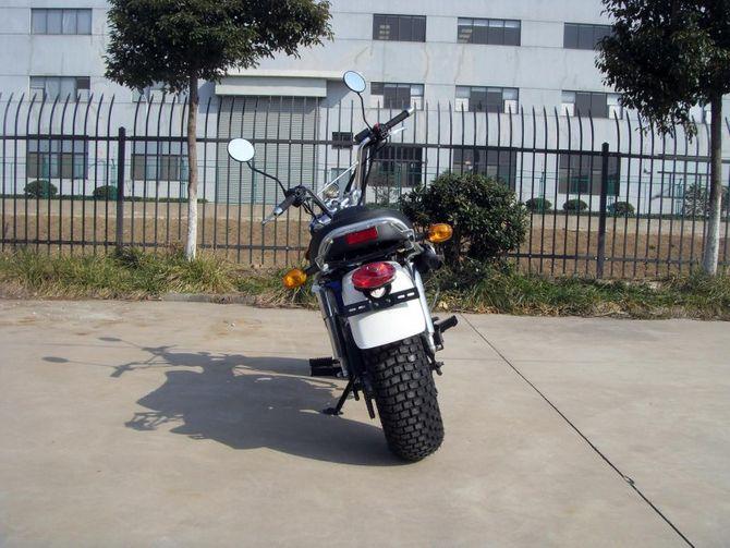Skyteam T-Rex 50 ccm - ST50-11 - 2 Personen Zulassung