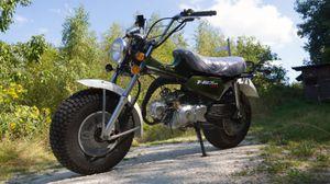 Skyteam T-Rex 50 ccm - ST50-11 - 2 Personen Zulassung 001