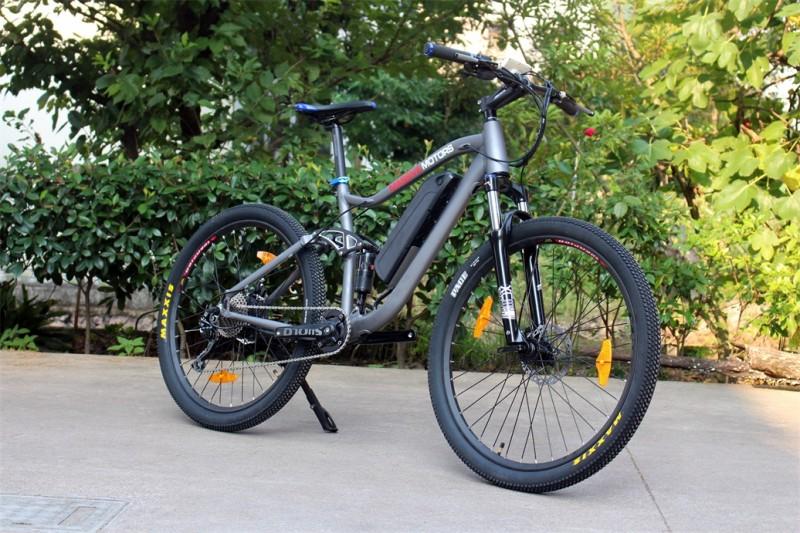 e bike mountainbike pedelec antrieb 36v 250 watt 9. Black Bedroom Furniture Sets. Home Design Ideas