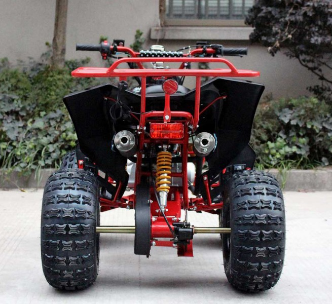Automatik Quad für Kinder mit Rückwärtsgang  - 125ccm Panther P-Limited