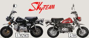 Skyteam Tuning Kit für Monkey / Gorilla / SkyMini mit 50cc - ST50-8 original von Skyteam