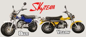 Skyteam T-Rex 50cc - ST50-11 Tuning Kit original von Skyteam