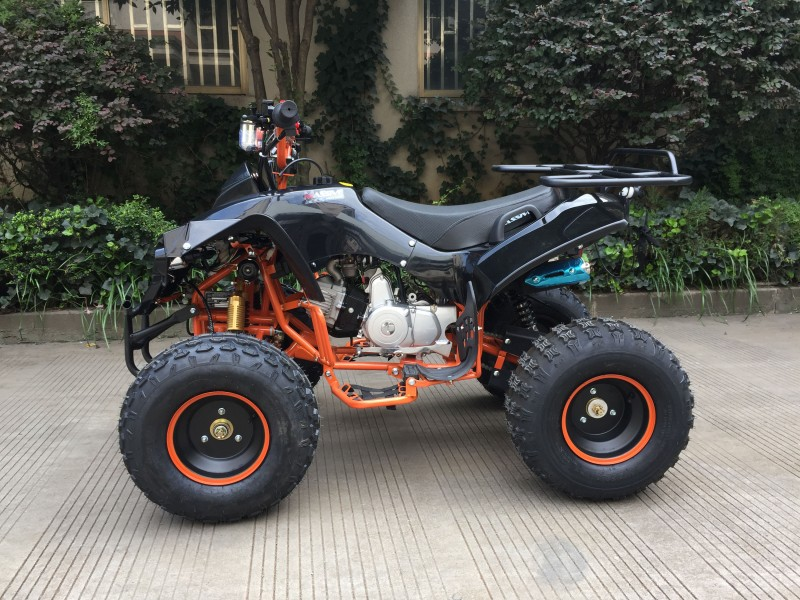 "125cc Mini Atv Kinderquad ""Panther"" – Bild 4"