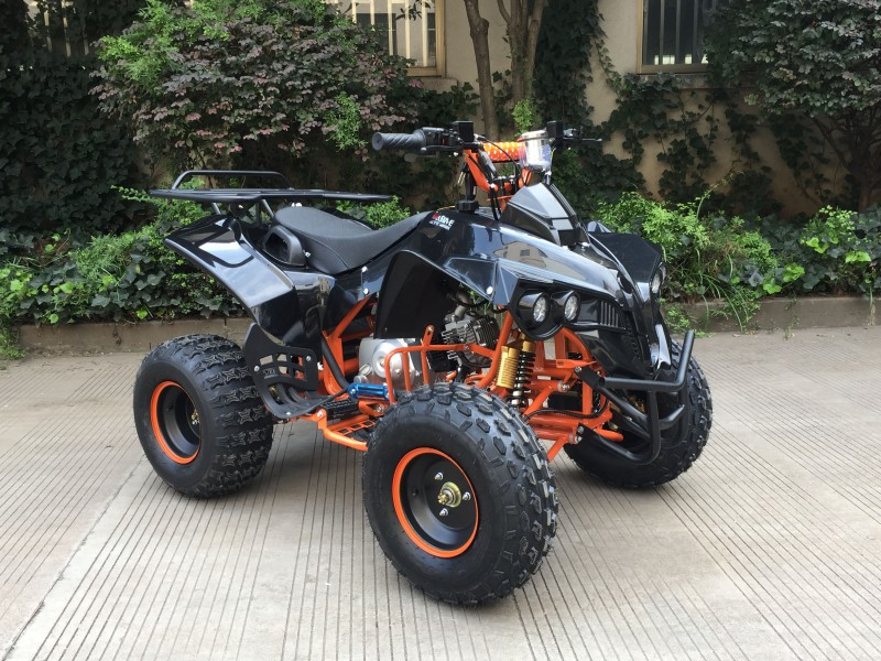 "125cc Mini Atv Kinderquad ""Panther"" – Bild 3"