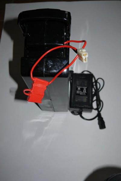 Akkupack 36V für Elektro Kinderquad Big Eco 600 Watt – Bild 1
