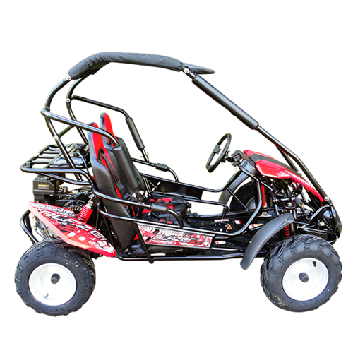 kinderbuggy gokart buggy f r kinder mit 200ccm 4 takt motor automatik 2 sitzer strandbuggy s. Black Bedroom Furniture Sets. Home Design Ideas
