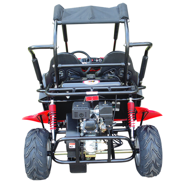 Kinderbuggy GoKart Buggy für Kinder mit 200ccm 4 Takt-Motor - Automatik - 2 Sitzer