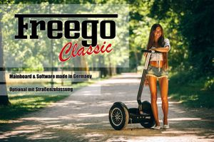 Self Balance Scooter Freego Classic 001