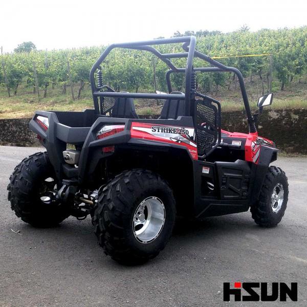 UTV Striker 250 von Hisun - Sport & Fun Edition inkl. Seilwinde - ROT – Bild 7
