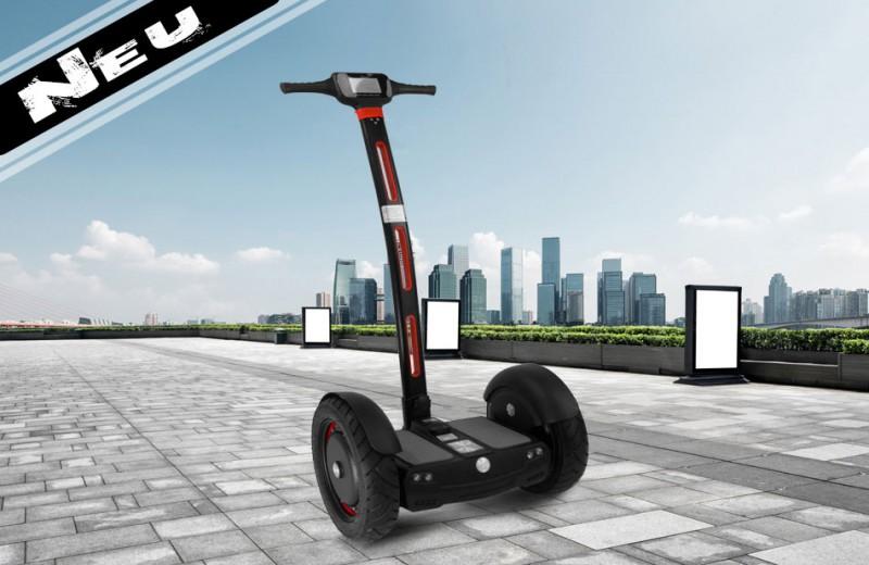 segwheel 1300 watt power hoverboard mit 63 volt lithium akku 15 zoll bluetooth hoverboard. Black Bedroom Furniture Sets. Home Design Ideas