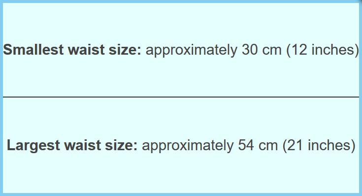 Konfidence Schwimmwindel mit umfangreichem Babyschwimmratgeber (passt von 3 Monate bis 3 Jahre) – Bild 13