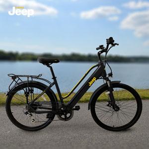 Trekking E-Bikes