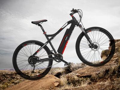 Mountain E-Bike