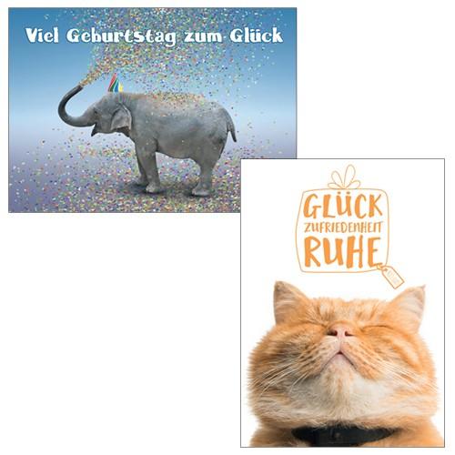 Postkarten Online Shop Lustig Sprüche Mannfrau Büro