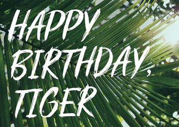 Postkarte A6 +++ LUSTIG +++ HAPPY BIRTHDAY, TIGER