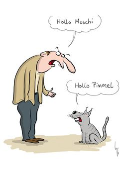 Postkarte A6 +++ CARTOON +++ HALLO MUSCHI HALLO PIMMEL