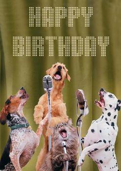 Postkarte A6 +++ LUSTIG +++ HAPPY BIRTHDAY DOGS SINGING