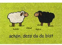 """Fußmatte Fußabstreifer Kokos """"Schön, dass du da bist"""" grün 40x60x1,5cm rutschfest"""
