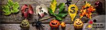Teppichläufer Küchenläufer Herbst & Kürbisse 50x180 cm waschbar