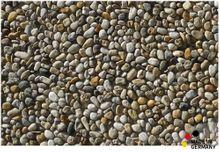 Fußmatte Fußabstreifer ESSENCE Kieselsteine Steine 40x60x0,5cm waschbar