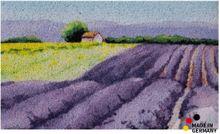 Fußmatte Abstreifer Schmutzfangmatte Haus im Lavendelfeld lila 65x110 cm waschbar