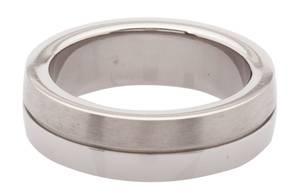 CEM titanium jewelry Ring Gray PTS004